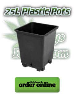 25l plastic pots for growing cannabis,Cannabis growers forum & community, How to grow cannabis, how to grow weed, a step by step guide to growing weed, cannabis growers forum, need help with sick plant, what's wrong with my cannabis plant, percys Grow Room, the Grow Room, percys Grow Guides, we'd growing forum, weed growers community, how to grow weed in coco, when is my cannabis plant ready for harvest, how to feed my cannabis plant, beginners guide to growing weed, how to grow weed for personal use, cannabis plant deficiency, how to germinate cannabis seeds, where to buy cannabis seeds, best weed growers website
