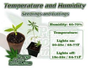 Temperature and humidity guide for cannabis seedlings and cuttings, , Cannabis growers forum & community, How to grow cannabis, how to grow weed, a step by step guide to growing weed, cannabis growers forum, need help with sick plant, what's wrong with my cannabis plant, percy's Grow Room, the Grow Room, Cannabis Grow Guides, weed growing forum, weed growers community, how to grow weed in coco, when is my cannabis plant ready for harvest, how to feed my cannabis plant, beginners guide to growing weed, how to grow weed for personal use, cannabis plant deficiency, how to germinate cannabis seeds, where to buy cannabis seeds, best weed growers website, Learn to grow cannabis, is it easy to grow weed, How to grow cannabis, how to grow weed, a step by step guide to growing weed, cannabis growers forum, need help with sick plant, what's wrong with my cannabis plant, percys Grow Room, the Grow Room, percys Grow Guides, we'd growing forum, weed growers community, how to grow weed in coco, when is my cannabis plant ready for harvest, how to feed my cannabis plant, beginners guide to growing weed, how to grow weed for personal use, cannabis plant deficiency, how to germinate cannabis seeds, where to buy cannabis seeds, best weed growers website, Cannabis Growers forum, weed growers forum, How to grow legal cannabis, a step by step guide to growing weed, cannabis growing guide, tips for marijuana growers, growing cannabis plants for the first time, marijuana growers forum, marijuana growing tips, cannabis plant problems, cannabis plant help, marijuana growing expert advice
