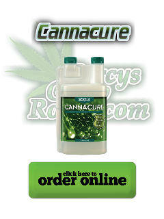 cannacure pesticide, Cannabis growers forum & community, How to grow cannabis, how to grow weed, a step by step guide to growing weed, cannabis growers forum, need help with sick plant, what's wrong with my cannabis plant, percy's Grow Room, the Grow Room, Cannabis Grow Guides, weed growing forum, weed growers community, how to grow weed in coco, when is my cannabis plant ready for harvest, how to feed my cannabis plant, beginners guide to growing weed, how to grow weed for personal use, cannabis plant deficiency, how to germinate cannabis seeds, where to buy cannabis seeds, best weed growers website, Learn to grow cannabis, is it easy to grow weed