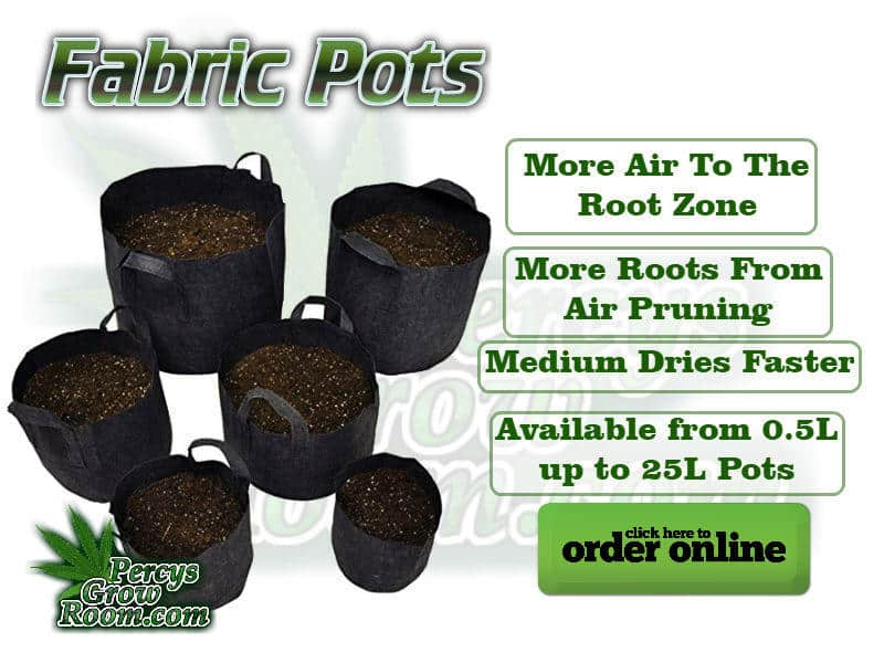 Fabric Pots, More aire to the root zone, more roots from air pruning, medium dries faster, available form 0.5l up to 25l pots. Cannabis growers forum & community, How to grow cannabis, how to grow weed, a step by step guide to growing weed, cannabis growers forum, need help with sick plant, what's wrong with my cannabis plant, percys Grow Room, the Grow Room, percys Grow Guides, we'd growing forum, weed growers community, how to grow weed in coco, when is my cannabis plant ready for harvest, how to feed my cannabis plant, beginners guide to growing weed, how to grow weed for personal use, cannabis plant deficiency, how to germinate cannabis seeds, where to buy cannabis seeds, best weed growers website