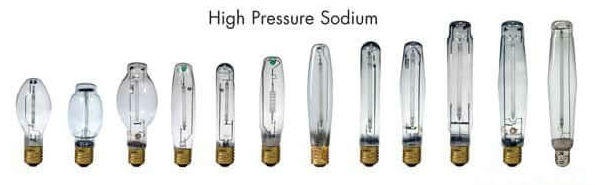 a selection of high pressure sodium bulbs used for growing cannabis indoors, Cannabis growers forum & community, How to grow cannabis, how to grow weed, a step by step guide to growing weed, cannabis growers forum, need help with sick plant, what's wrong with my cannabis plant, percys Grow Room, the Grow Room, percys Grow Guides, we'd growing forum, weed growers community, how to grow weed in coco, when is my cannabis plant ready for harvest, how to feed my cannabis plant, beginners guide to growing weed, how to grow weed for personal use, cannabis plant deficiency, how to germinate cannabis seeds, where to buy cannabis seeds, best weed growers website