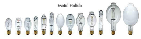 A selection of metal halide bulbs for growing cannabis indoors, Cannabis growers forum & community, How to grow cannabis, how to grow weed, a step by step guide to growing weed, cannabis growers forum, need help with sick plant, what's wrong with my cannabis plant, percys Grow Room, the Grow Room, percys Grow Guides, we'd growing forum, weed growers community, how to grow weed in coco, when is my cannabis plant ready for harvest, how to feed my cannabis plant, beginners guide to growing weed, how to grow weed for personal use, cannabis plant deficiency, how to germinate cannabis seeds, where to buy cannabis seeds, best weed growers website