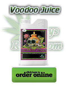 voodoo juice, root boosters for cannabis, grow more roots on a cannabis plant, cannabis terminology, cannabis slang, Cannabis growers forum & community, How to grow cannabis, how to grow weed, a step by step guide to growing weed, cannabis growers forum, need help with sick plant, what's wrong with my cannabis plant, percy's Grow Room, the Grow Room, Cannabis Grow Guides, weed growing forum, weed growers community, how to grow weed in coco, when is my cannabis plant ready for harvest, how to feed my cannabis plant, beginners guide to growing weed, how to grow weed for personal use, cannabis plant deficiency, how to germinate cannabis seeds, where to buy cannabis seeds, best weed growers website, Learn to grow cannabis, is it easy to grow weed