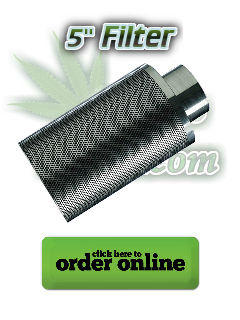 "carbon filter for 5 inch extractor, carbon filter for 5"" extractor, filters for grow tent, how to cover the smell of cannabis growing, Cannabis growers forum & community, How to grow cannabis, how to grow weed, a step by step guide to growing weed, cannabis growers forum, need help with sick plant, what's wrong with my cannabis plant, percy's Grow Room, the Grow Room, Cannabis Grow Guides, weed growing forum, weed growers community, how to grow weed in coco, when is my cannabis plant ready for harvest, how to feed my cannabis plant, beginners guide to growing weed, how to grow weed for personal use, cannabis plant deficiency, how to germinate cannabis seeds, where to buy cannabis seeds, best weed growers website, Learn to grow cannabis, is it easy to grow weed, How to grow cannabis, how to grow weed, a step by step guide to growing weed, cannabis growers forum, need help with sick plant, what's wrong with my cannabis plant, percys Grow Room, the Grow Room, percys Grow Guides, we'd growing forum, weed growers community, how to grow weed in coco, when is my cannabis plant ready for harvest, how to feed my cannabis plant, beginners guide to growing weed, how to grow weed for personal use, cannabis plant deficiency, how to germinate cannabis seeds, where to buy cannabis seeds, best weed growers website, Cannabis Growers forum, weed growers forum, How to grow legal cannabis, a step by step guide to growing weed, cannabis growing guide, tips for marijuana growers, growing cannabis plants for the first time, marijuana growers forum, marijuana growing tips, cannabis plant problems, cannabis plant help, marijuana growing expert advice"