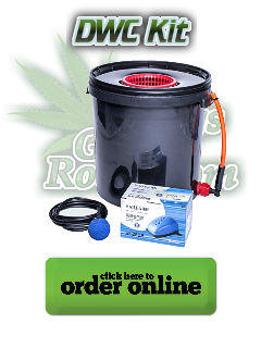 DWC Kit for Growing Cannabis