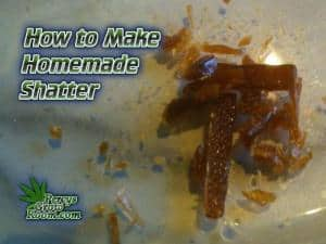 how to make shatter, how to make BHO, what is shater, home to make shatter at home, How to grow cannabis, how to grow weed, a step by step guide to growing weed, cannabis growers forum, need help with sick plant, what's wrong with my cannabis plant, percys Grow Room, the Grow Room, percys Grow Guides, we'd growing forum, weed growers community, how to grow weed in coco, when is my cannabis plant ready for harvest, how to feed my cannabis plant, beginners guide to growing weed, how to grow weed for personal use, cannabis plant deficiency, how to germinate cannabis seeds, where to buy cannabis seeds, best weed growers website, Cannabis Growers forum, weed growers forum, How to grow legal cannabis, a step by step guide to growing weed, cannabis growing guide, tips for marijuana growers, growing cannabis plants for the first time, marijuana growers forum, marijuana growing tips, cannabis plant problems, cannabis plant help, marijuana growing expert advice