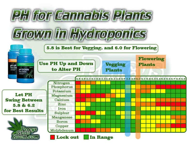 PH charts for growing cannabis, ph chart for growing cannabis in hydro, ph for cannabis in coco, what is the best ph fro growin cannabis, cannabis ph charts, how to adjsut cannabis ph, Ec and PH Fluctuations in Hydroponics, Cannabis growers forum & community, How to grow cannabis, how to grow weed, a step by step guide to growing weed, cannabis growers forum, need help with sick plant, what's wrong with my cannabis plant, percy's Grow Room, the Grow Room, Cannabis Grow Guides, weed growing forum, weed growers community, how to grow weed in coco, when is my cannabis plant ready for harvest, how to feed my cannabis plant, beginners guide to growing weed, how to grow weed for personal use, cannabis plant deficiency, how to germinate cannabis seeds, where to buy cannabis seeds, best weed growers website, Learn to grow cannabis, is it easy to grow weed