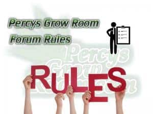 Percys Grow Room Rules, How to grow cannabis, how to grow weed, a step by step guide to growing weed, cannabis growers forum, need help with sick plant, what's wrong with my cannabis plant, percys Grow Room, the Grow Room, percys Grow Guides, we'd growing forum, weed growers community, how to grow weed in coco, when is my cannabis plant ready for harvest, how to feed my cannabis plant, beginners guide to growing weed, how to grow weed for personal use, cannabis plant deficiency, how to germinate cannabis seeds, where to buy cannabis seeds, best weed growers website, Cannabis Growers forum, weed growers forum, How to grow legal cannabis, a step by step guide to growing weed, cannabis growing guide, tips for marijuana growers, growing cannabis plants for the first time, marijuana growers forum, marijuana growing tips, cannabis plant problems, cannabis plant help, marijuana growing expert advice