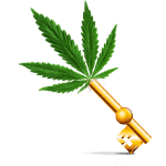 Golden key, percys grow room bling, , How to grow cannabis, how to grow weed, a step by step guide to growing weed, cannabis growers forum, need help with sick plant, what's wrong with my cannabis plant, percys Grow Room, the Grow Room, percys Grow Guides, we'd growing forum, weed growers community, how to grow weed in coco, when is my cannabis plant ready for harvest, how to feed my cannabis plant, beginners guide to growing weed, how to grow weed for personal use, cannabis plant deficiency, how to germinate cannabis seeds, where to buy cannabis seeds, best weed growers website, Cannabis Growers forum, weed growers forum, How to grow legal cannabis, a step by step guide to growing weed, cannabis growing guide, tips for marijuana growers, growing cannabis plants for the first time, marijuana growers forum, marijuana growing tips, cannabis plant problems, cannabis plant help, marijuana growing expert advice