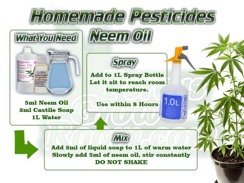 How to Make Neem Oil Pesticides