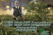 will the uk legalise cannabis, uk legalising cannabis for recreational use, beginners guide to growing weed, how to grow weed for personal use, cannabis plant deficiency, how to germinate cannabis seeds, where to buy cannabis seeds, best weed growers website, Cannabis Growers forum, weed growers forum, How to grow legal cannabis, a step by step guide to growing weed, cannabis growing guide, tips for marijuana growers, growing cannabis plants for the first time, marijuana growers forum, marijuana growing tips, cannabis plant problems, cannabis plant help, marijuana growing expert advice