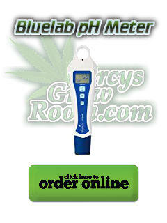 Blue lab ph pen, buy a ph meter for growing cannabis, best ph pen for growing cannabis, learn how to grow weed, how to grow weed, percys grow room, cannabis growers forum, cannabis growing forum, weed growing forum