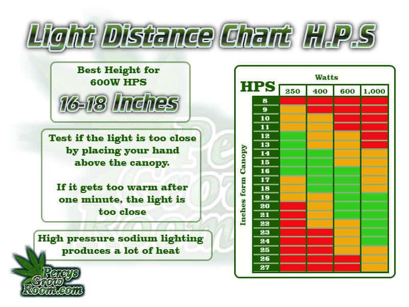 Light distance chart for HPS lights, beginners guide to growing weed, how to grow weed for personal use, cannabis plant deficiency, how to germinate cannabis seeds, where to buy cannabis seeds, best weed growers website, Cannabis Growers forum, weed growers forum, How to grow legal cannabis, a step by step guide to growing weed, cannabis growing guide, tips for marijuana growers, growing cannabis plants for the first time, marijuana growers forum, marijuana growing tips, cannabis plant problems, cannabis plant help, marijuana growing expert advice