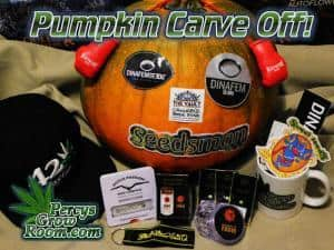 pumpkin carving competition, win cannabis seeds, free cannabis seeds, beginners guide to growing weed, how to grow weed for personal use, cannabis plant deficiency, how to germinate cannabis seeds, where to buy cannabis seeds, best weed growers website, Cannabis Growers forum, weed growers forum, How to grow legal cannabis, a step by step guide to growing weed, cannabis growing guide, tips for marijuana growers, growing cannabis plants for the first time, marijuana growers forum, marijuana growing tips, cannabis plant problems, cannabis plant help, marijuana growing expert advice
