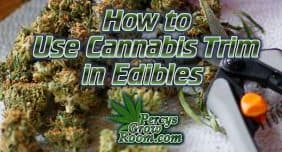 How to use cannabis trim for edibles, Cannabis growers forum & community, How to grow cannabis, how to grow weed, a step by step guide to growing weed, cannabis growers forum, need help with sick plant, what's wrong with my cannabis plant, percys Grow Room, the Grow Room, percys Grow Guides, we'd growing forum, weed growers community, how to grow weed in coco, when is my cannabis plant ready for harvest, how to feed my cannabis plant, beginners guide to growing weed, how to grow weed for personal use, cannabis plant deficiency, how to germinate cannabis seeds, where to buy cannabis seeds, best weed growers website