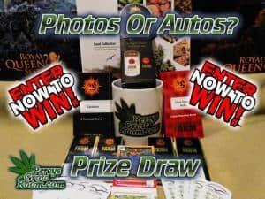 photos or autos competition, Percys Grow room, Cannabis growers Forum,