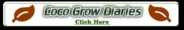 coco grow diaries, diaries of weed grown in coco, diaries of cannabis grows in coco, weed growing forum, cannabis growers forum, percys grow room