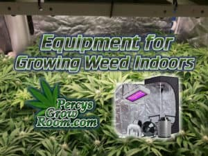 equipment for growing weed indoors, weed growers forum, cannabis grow, with equipment, cannabis growing forum, percys grow room
