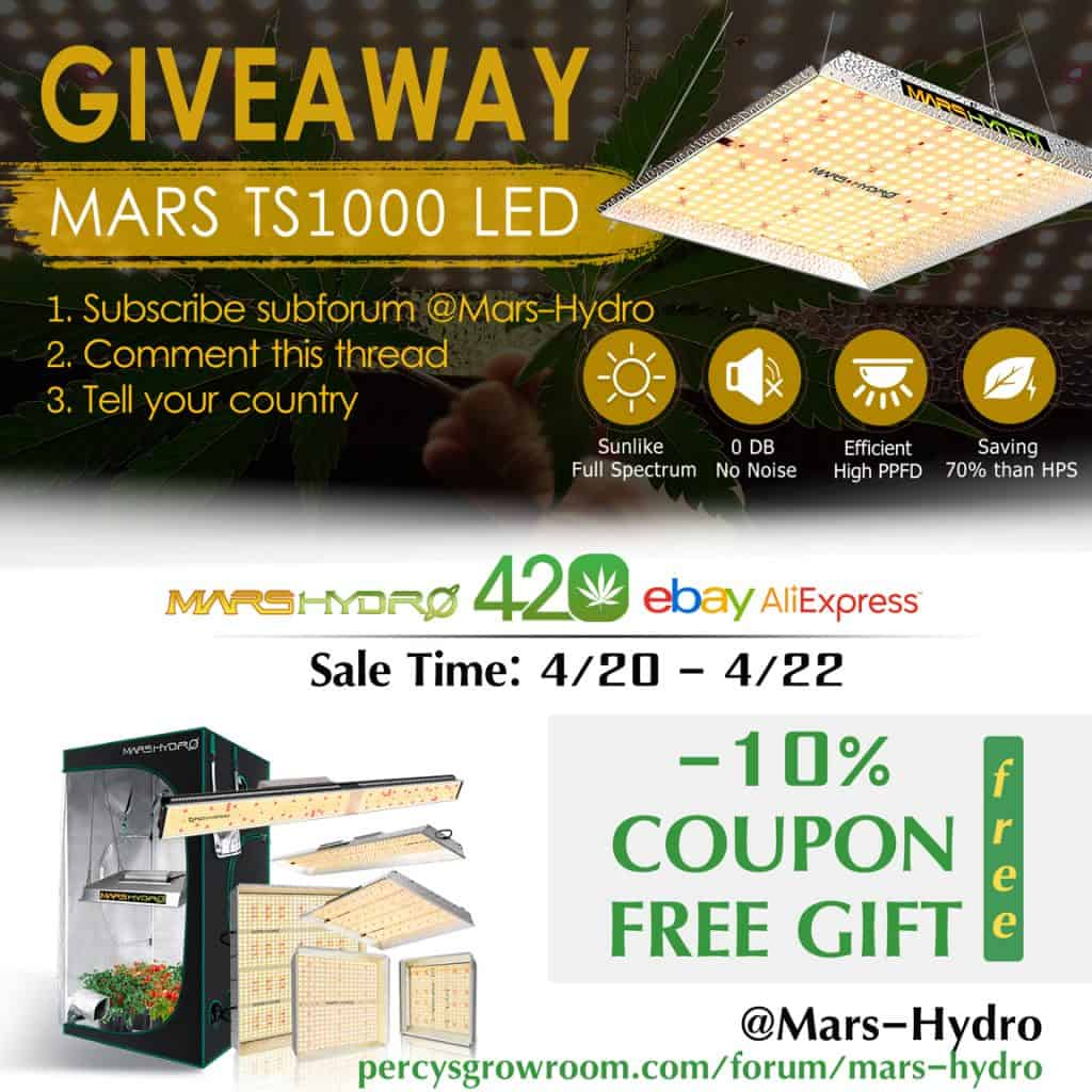 420 giveaway, mars hydro grow light, LED grow light, TS1000 mars hydro, Percys Grow Room, 420, free grow light