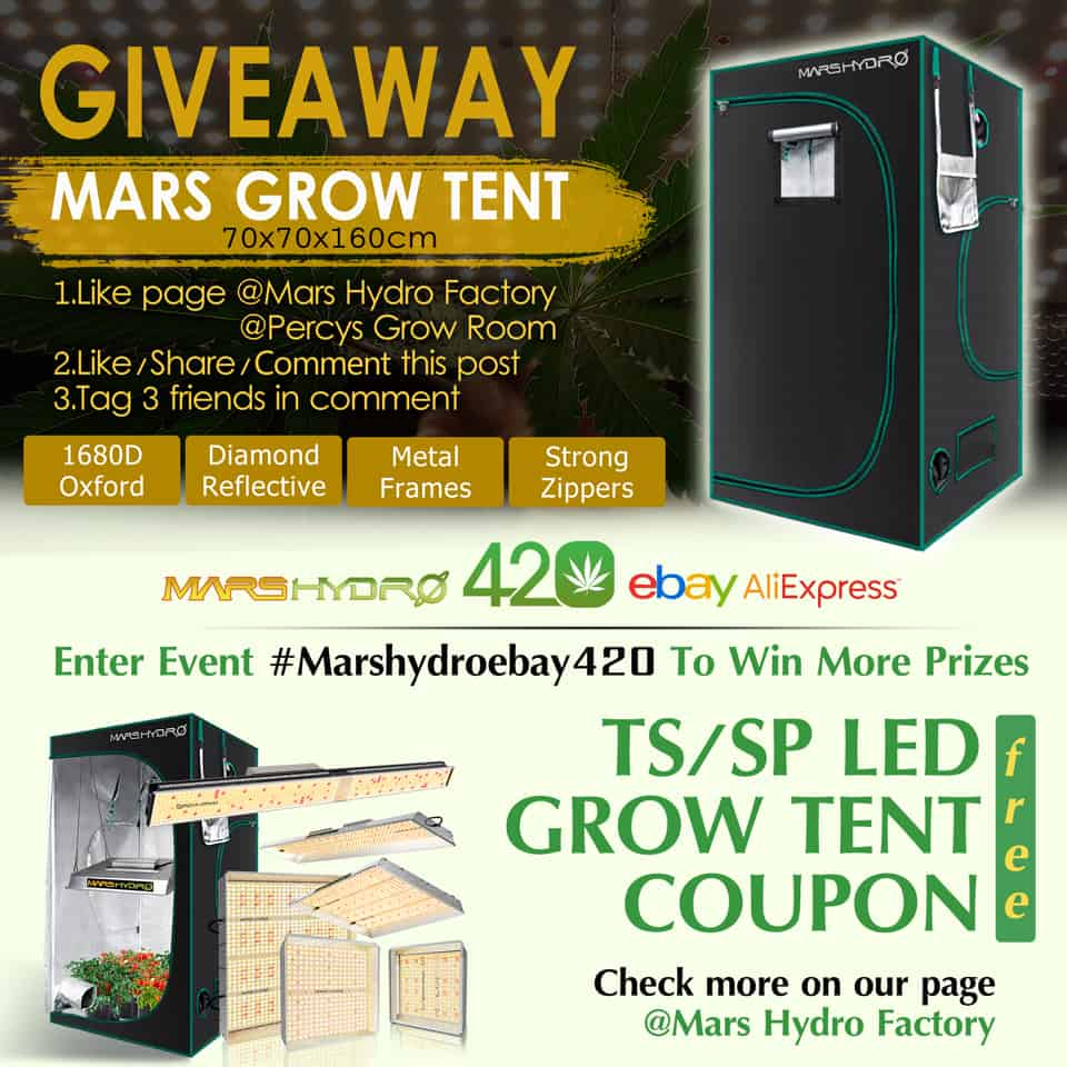 420 giveaway, mars hydro grow tent, tent for indoor growing, Percys Grow Room, 420, free grow tent, cannabis growers forum, weed growers website, how to grow weed