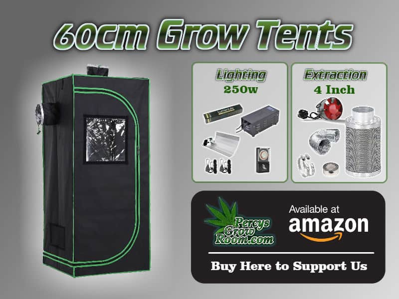 60cm Grow Tent with lighting and extraction guidelines, on a grey background, Percys grow room, Amazon, how to grow weed, cannabis growers forum