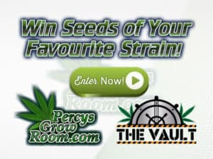 win free cannabis seeds, your favourite strain, percys grow room,