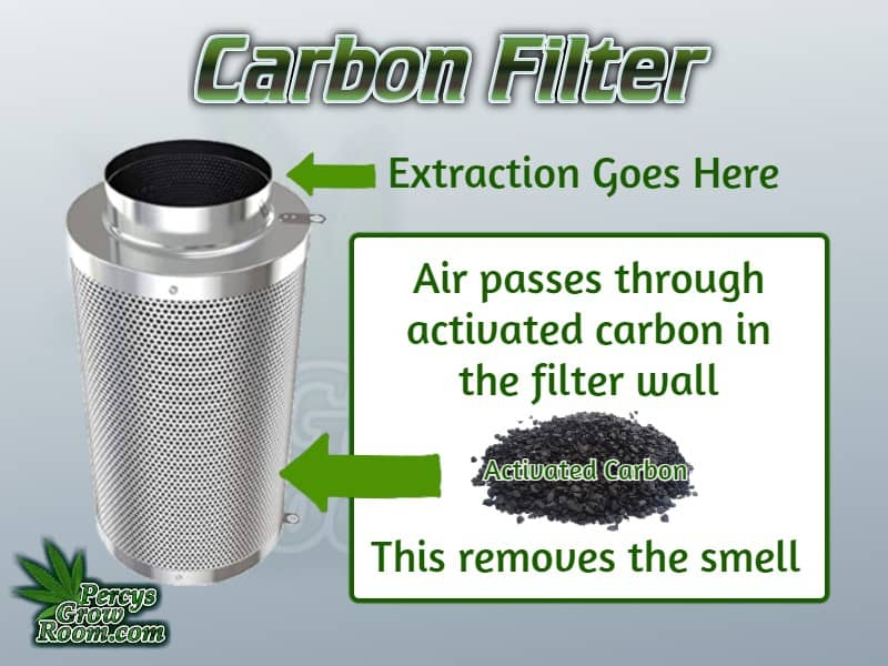 carbon filter, hiding the smell of cannabis grow, cannabis growers website, how to grow cannabis,