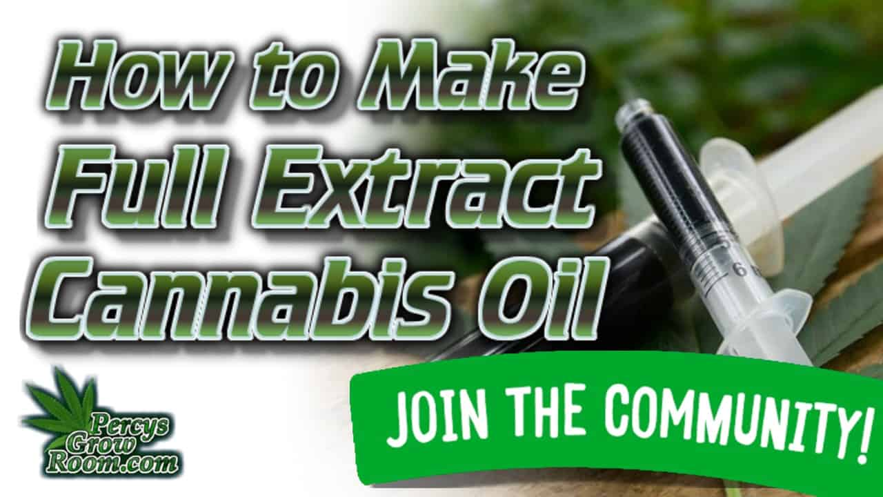 how to make full extract cannabis oil, how to make FECO oil, How to make FECO, Cannabis grow guides, cannabis extracts, percys grow room,