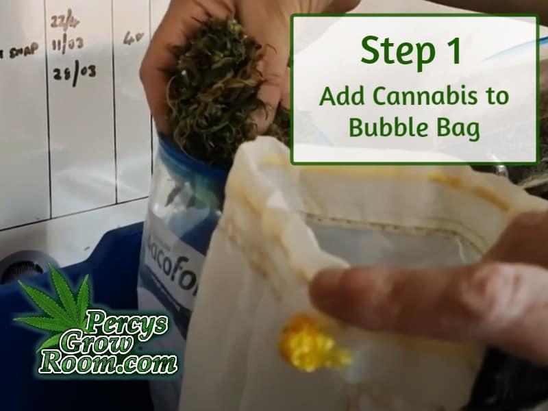 adding cannabis to a bubble bag, percys grow room, learn to grow cannabis