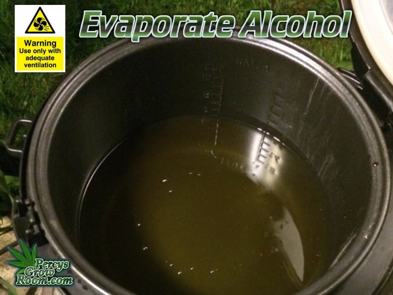 Evaporating alcohol in a rice cooker, outdoors, Percys grow room, cannabis growers forum,