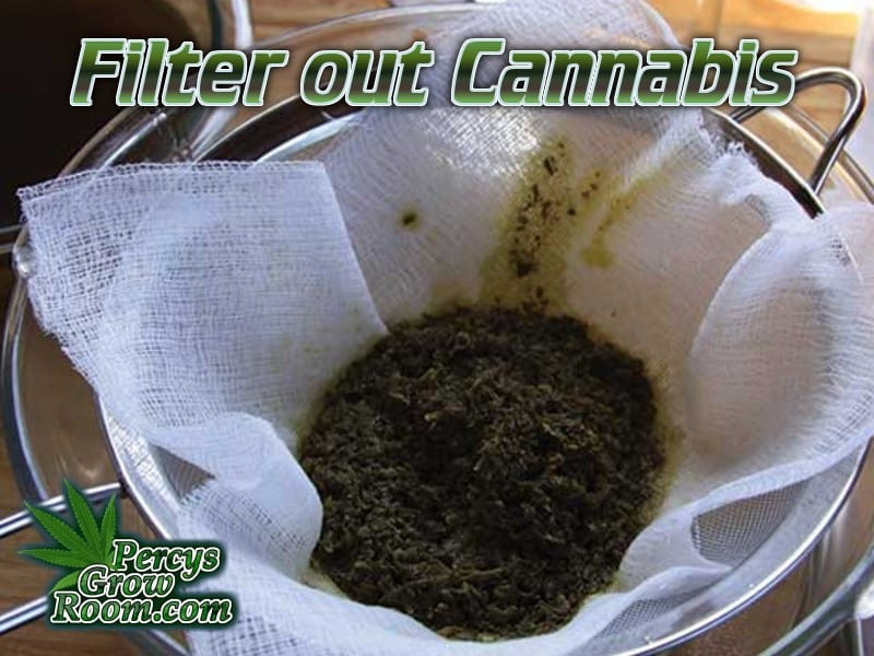 Filtering cannabis with a cheese cloth, into a jug, how to make FECO cannabis oil, Percys Grow Room