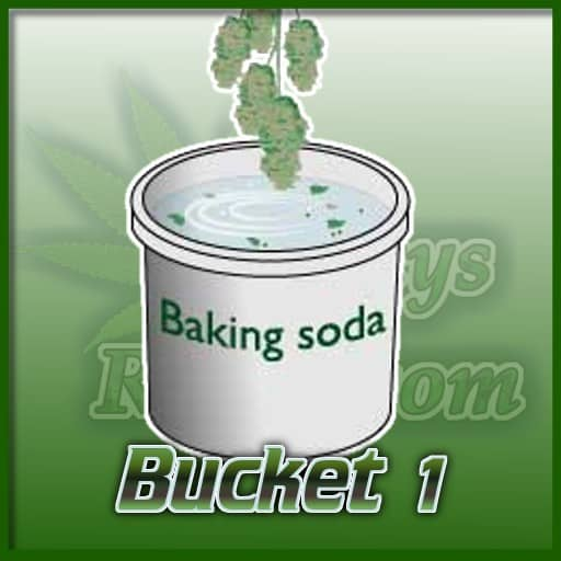 Bucket 1, baking soda and water, treating mould, cannabis grow guides,