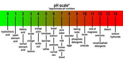 Ph chart1