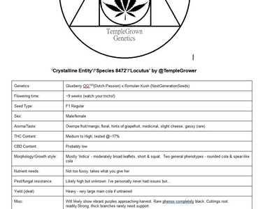 TG Genetics info card