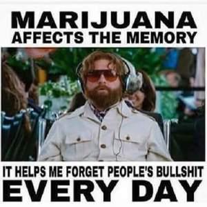 marijuana memory forget bs weedmemes