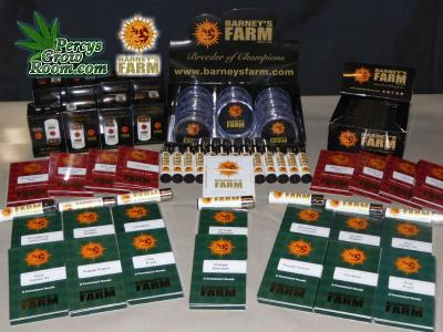 free prize draw for cannabis seeds