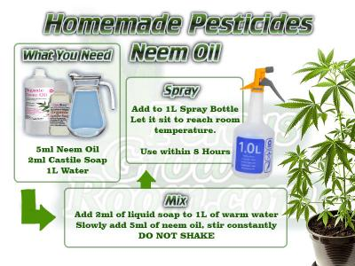 How to make neem oil spray