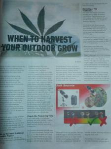 Macky ss article page 1