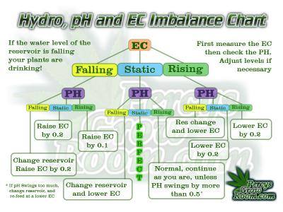 PH and EC fluctuations in Hydroponics