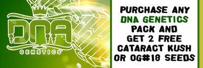 DNA Banner Jun20