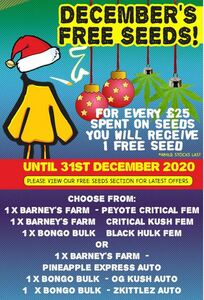 December Free