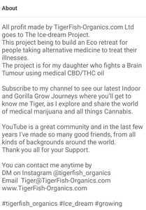 SmartSelect 20210204 124709 YouTube Vanced
