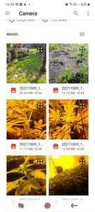 Screenshot 20211009 105901 Files